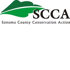 Foundation4_3_columns_square_scca_logo_final_color_high_res