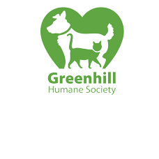 Foundation4_3_columns_square_greenhill-logo